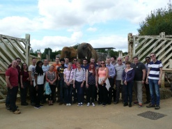 Billericay Office Team Building at Colchester Zoo