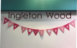 Ingleton Wood Wear it Pink!